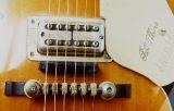 Halbakustische Gitarren_17