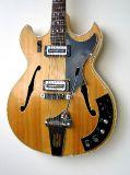 Halbakustische Gitarren_25