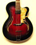 Vollakustische Gitarren_20